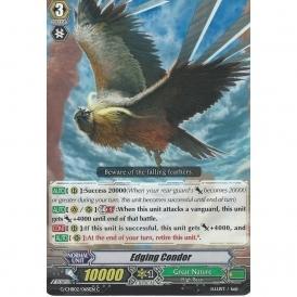 POLISH PENGUIN CARDFIGHT VANGUARD CARD G-CHB02//072EN C